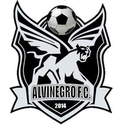 Alvinegro FC